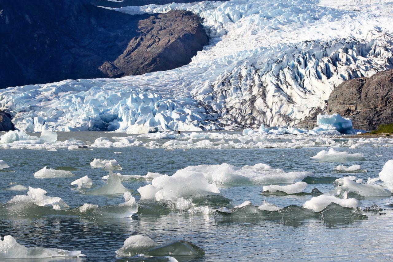 Melting glacier with floating ice blocks